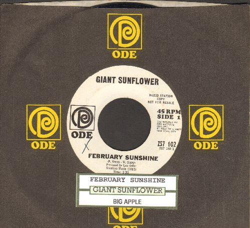 Giant Sunflower - February Sunshine/Big Apple (with company sleeve and juke box label) - VG7/ - 45 rpm Records
