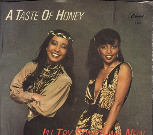 Taste Of Honey - I'll Try Something New/Good Bye Baby (with picture sleeve) - M10/NM9 - 45 rpm Records