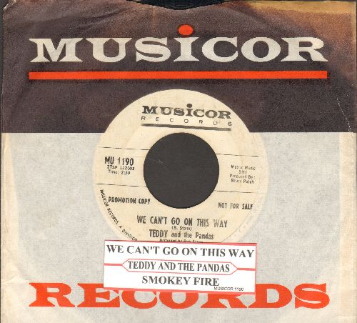 Teddy & The Pandas - We Can't Go On This Way/Smokey Fire (DJ advance pressing withjuke box label and Musicor company sleeve) - EX8/ - 45 rpm Records