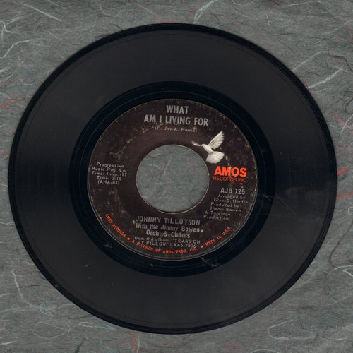Tillotson, Johnny - What Am I Living For/Joy To The World - NM9/ - 45 rpm Records