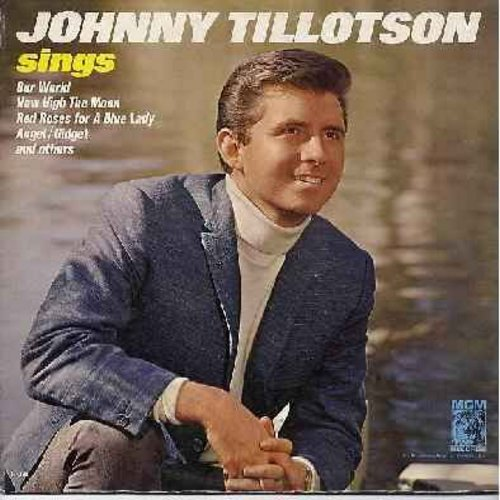 Tillotson, Johnny - Johnny Tillotson Sings: Angel, Red Roses For A Blue Lady (Wait 'Til You See) My Gidget, I'll Be Seeing You, How High The Moon (Vinyl MONO LP record) - EX8/EX8 - LP Records
