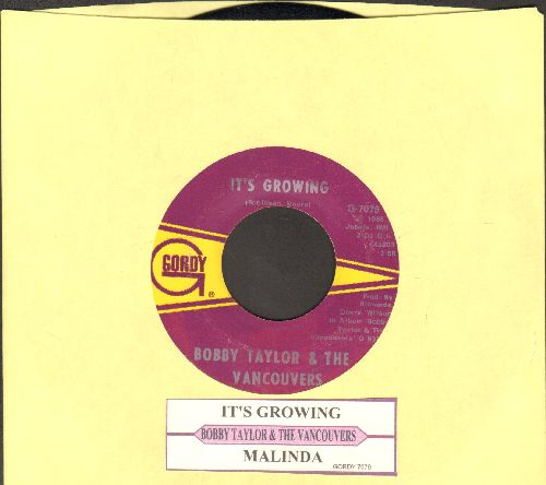 Taylor, Bobby & The Vancouvers - It's Growing/Malinda (with juke box label) - NM9/ - 45 rpm Records