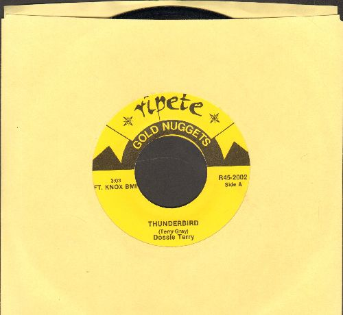 Terry, Dossie - Thunderbird/I Am Traveling Through This Land (by The Ambassadors Of Philadelphia (re-issue) - NM9/ - 45 rpm Records