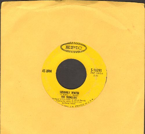 Tremeloes - Suddenly You Love Me/Sudenly Winter  - VG7/ - 45 rpm Records