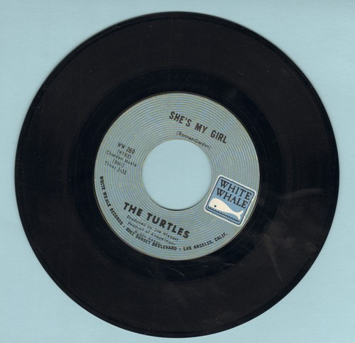 Turtles - She's My Girl/Chicken Little Was Right (bb, wol) - EX8/ - 45 rpm Records