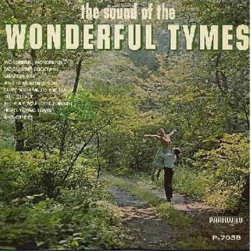 Tymes - Wonderful Tymes: Chances Are, Blue Velvet, Moonlight Cocktails, The Way You Look Tonight, Come With Me To The Sea, Wonderful Wonderful (Vinyl MONO LP record) (minor wol) - EX8/NM9 - LP Records