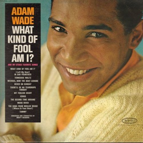 Wade, Adam - What Kind Of Fool Am I?: Venus, Moon River, Tammy, Song From Moulin Rouge (Vinyl MONO LP record) - EX8/EX8 - LP Records