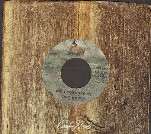 Wilson, Carl - What You Do To Me/Time (with Caribu company sleeve) - NM9/ - 45 rpm Records