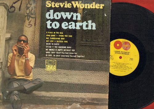 Wonder, Stevie - Down To Earth: The Place In The Sun, Sixteen Tons, Mr. Tambourine Man, Angel Baby (Vinyl STEREO LP record) - VG7/G5 - LP Records