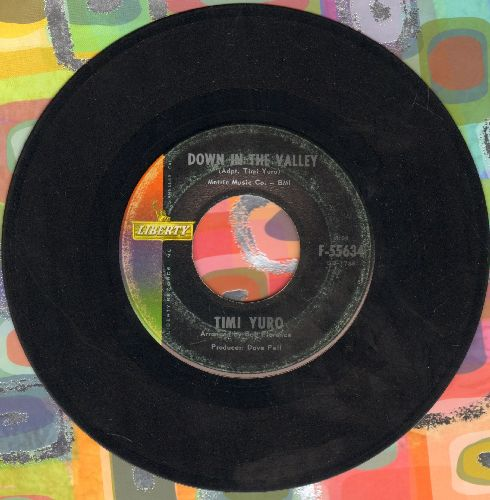 Yuro, Timi - Down In The Valley/Gotta Travel On - VG7/ - 45 rpm Records